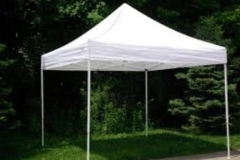 Rental store for 10  x 10  EZ Up Tent in Fresno CA