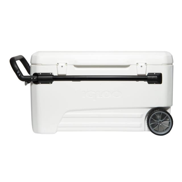 Where to find Igloo Glide PRO Cooler 110 Qt White in Fresno